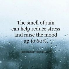 The smell of rain can help reducing stress and raise the mood up to 60 %. Lessons Learned In Life Rainy Day Quotes, Weather Quotes, Morning Quotes, I Love Rain, Love Rain Quotes, Quotes About Rain, Mother Nature Quotes, Smell Of Rain, Enjoy The Ride