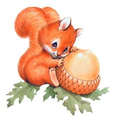 Squirrel clip art with nuts free clipart images image 2 clipartcow 2 Cute Squirrel, Baby Squirrel, Squirrels, Cute Animal Drawings, Cute Drawings, Cute Images, Cute Pictures, Squirrel Clipart, Baby Animals