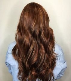 Long+Chocolate+Brown+Hair+With+Caramel+Highlights