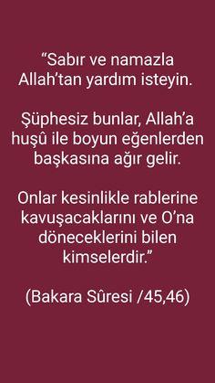 Islam, App, Silk, Apps