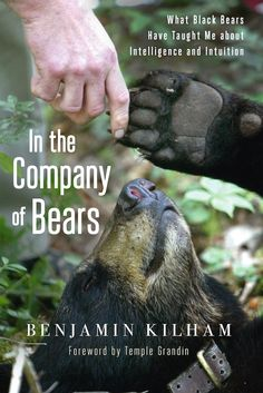What Can Humans Learn from Bears? - Chelsea Green http://goo.gl/JZNCLY