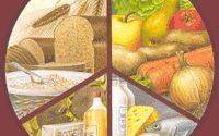 Eiwitten, koolhydraten en vetten