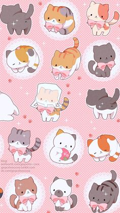 New Wallpaper Phone Cute Pink Wallpapers Love We Heart It Ideas Wallpaper Gatos, Cute Cat Wallpaper, Kawaii Wallpaper, Animal Wallpaper, Pink Wallpaper, Cat Pattern Wallpaper, Cute Animal Drawings Kawaii, Kawaii Drawings, Cute Drawings