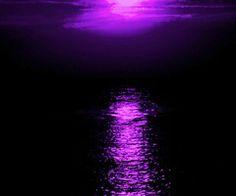 Purple Sunset, Purple Love, All Things Purple, Shades Of Purple, Deep Purple, Purple And Black, Pink Purple, Purple Stuff, The Color Purple