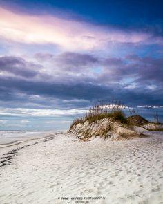 wall art, home decor, isolated beach, sea oats, footsteps in sand, blue sky, ocean, gulf, sunset, sand dunes, coastal - SEA OATS