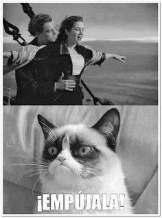 http://compartirvideos.es imagenes chistosas videos graciosos memes risas gifs graciosos chistes divertidas humor