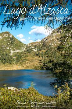 Banner, Mountains, Nature, Travel, Hill Walking, Locarno, Switzerland, Naturaleza, Trips