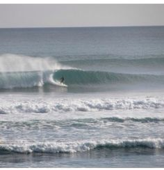Muriwai Beach, West Coast