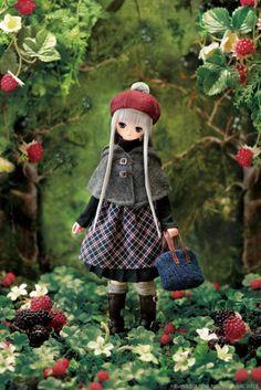 AZONE 1/6 Doll Excute 9th Komorebimori no Doubutsutachi Silver Fox Lien