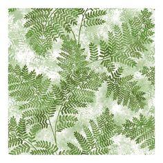 Cyathea Green Fern Wallpaper - 21 x 396 x 0.025 (21 x 396 x 0.025), Advantage