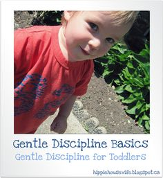 The Hippie Housewife: Gentle Discipline for Toddlers Exactly what I need with my strong-willed toddler.