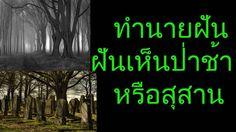 ฝันเห็นป่าช้าหรือที่ฝังศพหรือสุสาน