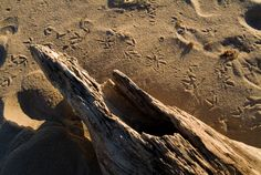 50 states, 50 spots: Natural wonders - CNN.com - Block Island Bluffs