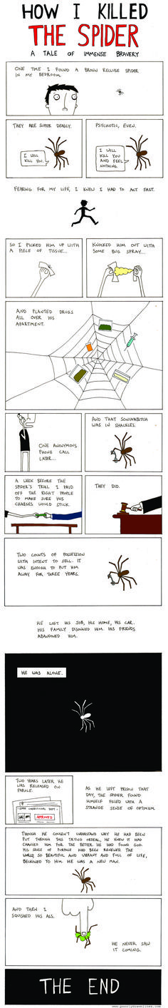 How I killed the spider: A tale of immense bravery.