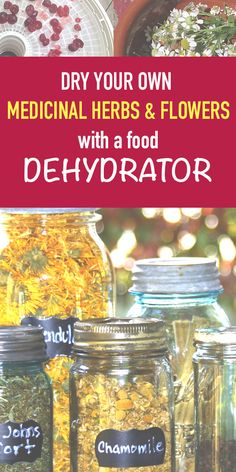 Want to dry your own herbs and medicinal flowers and fruits? Read this Dehydrator Review ! It will guide you !
