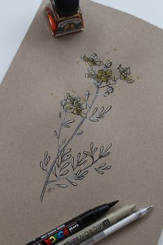 "Day 31: Ruda ""Ruta graveolens""  #InkTober #InkTober2016 #InkToberEspaña #FloraDaGaliza Inktober, Ruta Graveolens, Drawings, Sketches, Drawing, Portrait, Draw, Grimm, Illustrations"