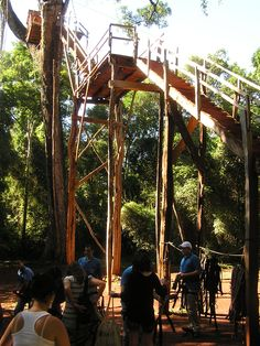 Rickety zipline platform for a canopy tour near Iguazu Falls in Argentina