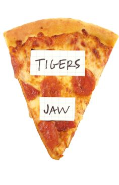 tigers jaw Sing To Me, Pop Punk, Music Bands, Cool Bands, My Music, Punk Art, Tigers, Bones, Grunge