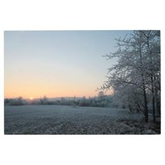 Metal Print: Winter Sunset Germany Metal Print - metal style gift ideas unique diy personalize