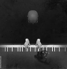 piano cat bald / by alex howitt Black White Photos, Black And White Photography, Show Me The Way, Wild Nature, Crazy Cat Lady, Cool Cats, Art Photography, Creatures, The Incredibles