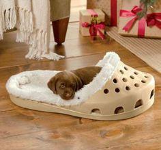Cooles Hundebett in Form von einem Schuh