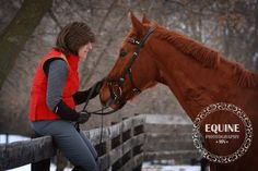 fun day photographing dressage horses at  Wintergreen Farms  http://equinephotographymn.weebly.com/