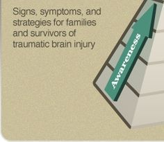 Hierarchy of Cognitive Functions   Origami Brain Injury Rehabilitation Center