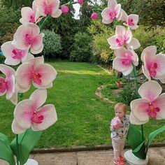 Giant flower-foam flower-photozone-Flower Backdrop-large flower with stand Anemone Flower, Hibiscus Flowers, Poppy Flowers, Black Flowers, Large Flowers, Beauty Salon Decor, Foam Roses, Blue Orchids, Giant Paper Flowers