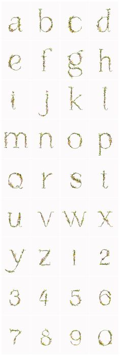 """An entire alphabet, made from flowers! Not exactly as easy as """"ABC."""""""