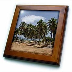 """Africa, Benin, Ouidah, Slave Coast, beachfront -AF03 CMI0122 - Cindy Miller Hopkins - 8x8 Framed Tile by 3dRose. $22.99. Solid wood frame. Cherry Finish. Keyhole in the back of frame allows for easy hanging.. Dimensions: 8"""" H x 8"""" W x 1/2"""" D. Inset high gloss 6"""" x 6"""" ceramic tile.. Africa, Benin, Ouidah, Slave Coast, beachfront -AF03 CMI0122 - Cindy Miller Hopkins Framed Tile is 8"""" x 8"""" with a 6"""" x 6"""" high gloss inset ceramic tile, surrounded by a solid wood frame ..."""