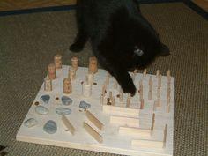 Katzenfummelbretter mit Holzböden, 2007-2010, Teil 1 - Katzenspiele
