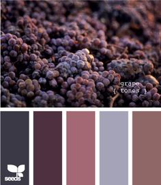 grape tones! Love this!