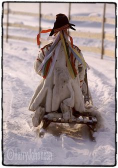 A man i sami costume driving with reideer