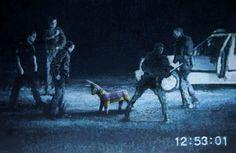 BanksyInside - StumbleUpon