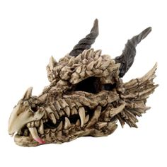 Large Dragon Skull - CC9255 by Medieval Collectibles
