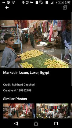 Luxor, Street Vendor, Creative, Egypt