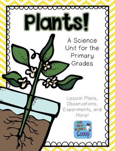 The First Grade Scoop: Plants Unit, Currently April, and a FREEBIE!