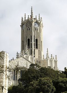 The clock tower at University of Auckland, New Zealand. This just had to be the land of the Lord of the Rings.