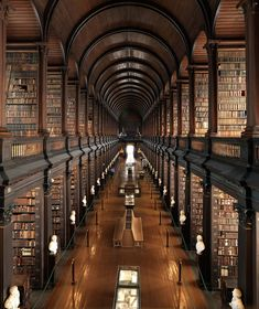 Happy St. Patrick's Day! Here's the gorgeous Trinity College Library in Dublin