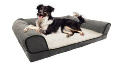 Restology by Precious Tails Gray Orthopedic High Density Foam Micro Suede Couch Style Bolster Lounge Pet Bed with Sherpa Fleece Center Seat >>> For more information, visit image link.