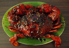 Kepiting lada hitam  Black pepper crab