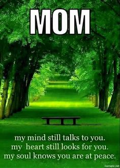 R.I.P. mom, I miss you!