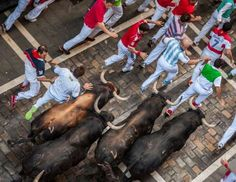 Fermin Festival, fighting with bulls