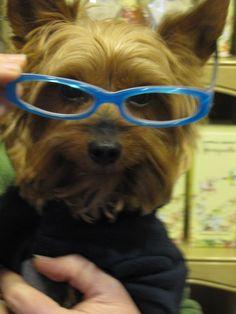 Love the glasses...