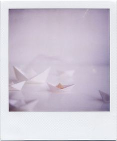 paper boats.