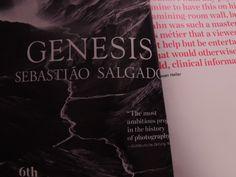 Genesis - Sebastião Salgado History Of Photography, Clinic, Cover, Books, Sebastiao Salgado, Cut Outs, Libros, Book, Book Illustrations
