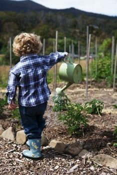 ~ In the Garden ~ .