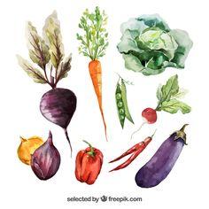 légumes Aquarelle Vecteur gratuit
