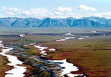 Tundra. La tundra ocupa aproximadamente un quinto de la superficie emergida.