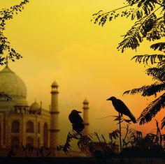 Dusk in Agra; photograph by Piet Flour